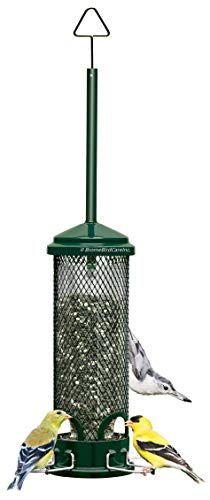 Squirrel Buster Mini Squirrel-proof Bird Feeder w/4 Metal Perches, 0.98-pound Seed Capacity