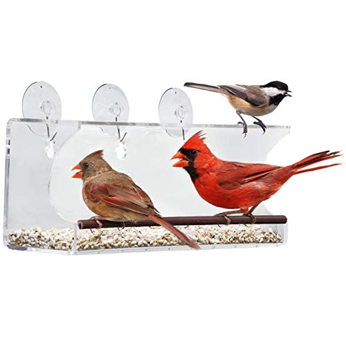 Tranquil Outdoors Large Acrylic Window Bird Feeder: Strong Removable Suction Cup Mounted Outdoor Bird House Feeder, Clear Birdfeeders for Large & Small Birds. Best See Thru Feeder for Bird Watching