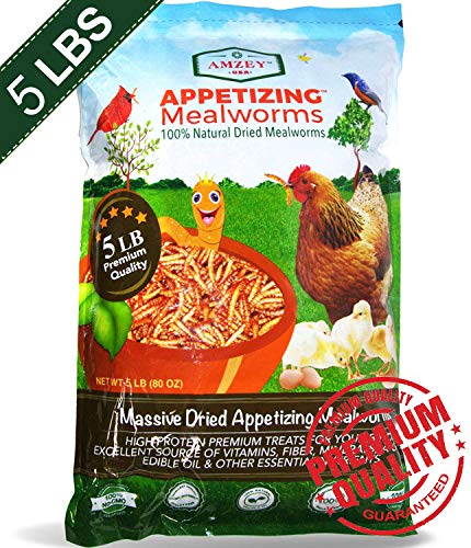 Mealworms -5 Lbs- 100% Non-GMO Dried Mealworms - Large Meal Worms - Bulk Mealworms -High Protein Treats- Perfect Mealworm for Chickens, Ducks, Turtles, Blue Birds, Lizards - Bag of Mealworms 5 LBS