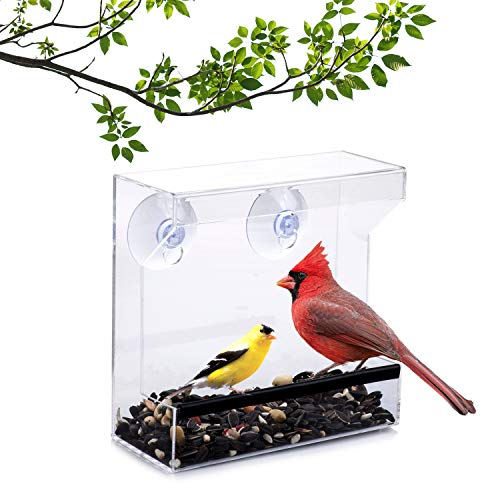 Wild Birds of Joy Window Bird Feeder with Strong Suction Cups and Seed Tray with Drain Holes, Small, Compact, Clear Acrylic, Easy Clean, Outside Feeders for Transparent Viewing
